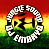 DJ Embryo - Jungle Sound Mix