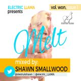 Melt Mix, Vol. Won, Issue 1 Mixed by Shawn Smallwood