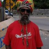 Hedonist Reggae 4