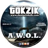 Tokzik - A.W.O.L.