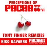 Perceptions of Pacha Remixed by Tony Finger - Mix Session Summer 2011