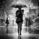 Rainy Summer
