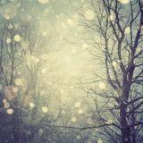 Fecc - December Promo Mix (2012)
