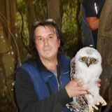 Powerful Owlet Dramatic Rescue