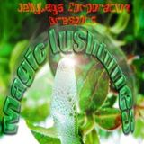Magic Lushtunes with Jake Stern