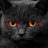Cats Mixed By: Rodríguez & Salgado