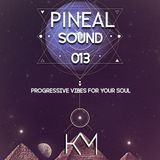 Pineal Sound 013 - Progressive Vibes For Your Soul.