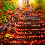Michael AudioAddictz - Autumn Mix - 11th October 2014