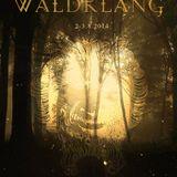 Waldklang Open Air  (CH) 2-8-2014  Le Turnschuh