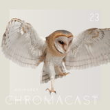 Chromacast 23 - Goingrey