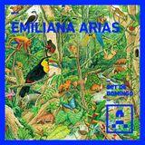 Artifakt Set de Domingo (por Emiliana Arias)