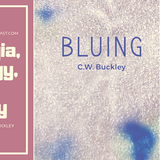Sectarian Review 105: Bluing with C.W. Buckley