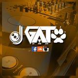 DJ GATO - ROCK EN ESPAÑOL Vs. INGLES MIX