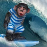 The Surfin' Monkey's Garage Sale of Psychedelic Popsicles