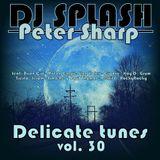 Dj Splash (Peter Sharp) - Delicate tunes vol.30 2017
