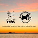 Café Mambo Radio - House Trained Show Episode 1 (29/03/19)