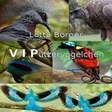 VIPutzervögelchen