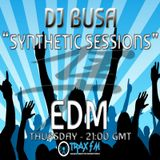 [Synthetic Session 025]