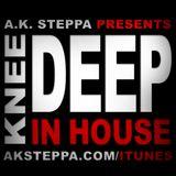 KNEE DEEP IN HOUSE 3 BY DJ A.K.STEPPA