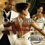 DJ Wali-B Hot Baby!! Soulful House Mix