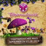 Dimitri Vegas & Like Mike - Live @ TomorrowWorld 2014 (Atlanta, USA) - 27.09.2014