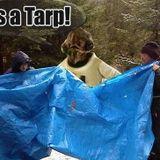 IT'S A TARP MIX