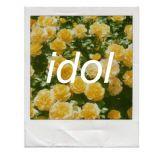 「idol」