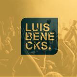HouseFestivalMixtap Mixed by LUIS BENECKS