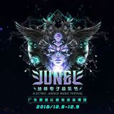 Destructo - LIVE @ Main Stage Electric Jungle Music Festival China, 08/12/18