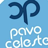 Let's play 12.01.2013 (mixed by Pavo Celeste)