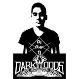 DjRafTj Dark Woods Dream Festival Entry