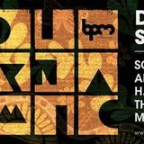 Adriatique - BPM Festival 2015, Diynamic (Blue Parrot, Mexico) – 13.01.2015