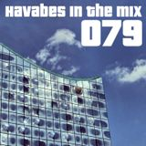 Havabes In The Mix - Episode 079