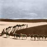 Judge Ming - Silkroad Expedition