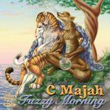 C Majah - Fuzzy Morning (dj set - Feb 2008)