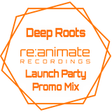 Deep Roots - re:animate recordings Launch Party Mix