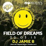 Jamie B's Field Of Dreams Happy Hardcore Live @ Biddy's Bar & Bistro West Belfast 22.03.15