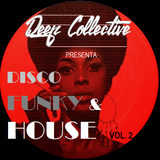 DISCO FUNK & HOUSE VOL. 2