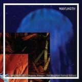 WAVLNGTH 007 - Aneesha Kotwani (The Houghton Festival Edition) [25-08-2017]