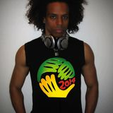 DJ Seth Sharp's World Cup Party Mix (house, dance, hip hop, techno, electro, live mashups)