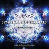 Symphony Of Fractals | Molecular Stage - Pulsar Festival 2016