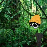 Jungle TORTUGA