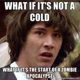 No5: Apocalypse Now