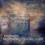 wfKontainerMix#7 _ The Elasticated Fossils