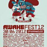 Dave Clarke - Live @ Awakenings Festival, Spaarnwoude, Holanda (30.06.2012)