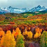 Autumn (Symphony of Color)