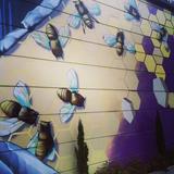 drum & bass bee