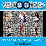 PETER RAUHOFER - Divas Pop 1 (adr23mix) Tribal House Mix