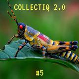 Collectiq 2.0 #5: Zeemeeuw