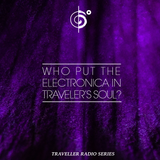 Who Put The Electronica In Traveler's Soul?
